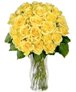 Yellow Sunshine Roses