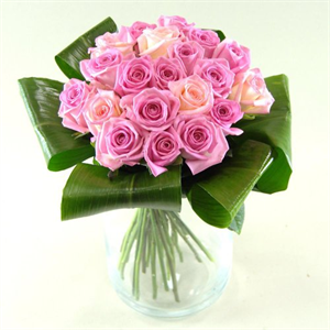 Pink Champagne Roses