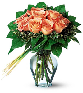 12 Orange Sunset Roses