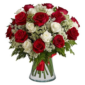 Duo of Red and White Roses